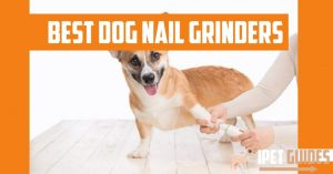 Best Dog nail grinders cover image