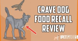 Crave_dog_food_recall_reviews_featured_image