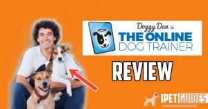 Doggy Dan review cover image