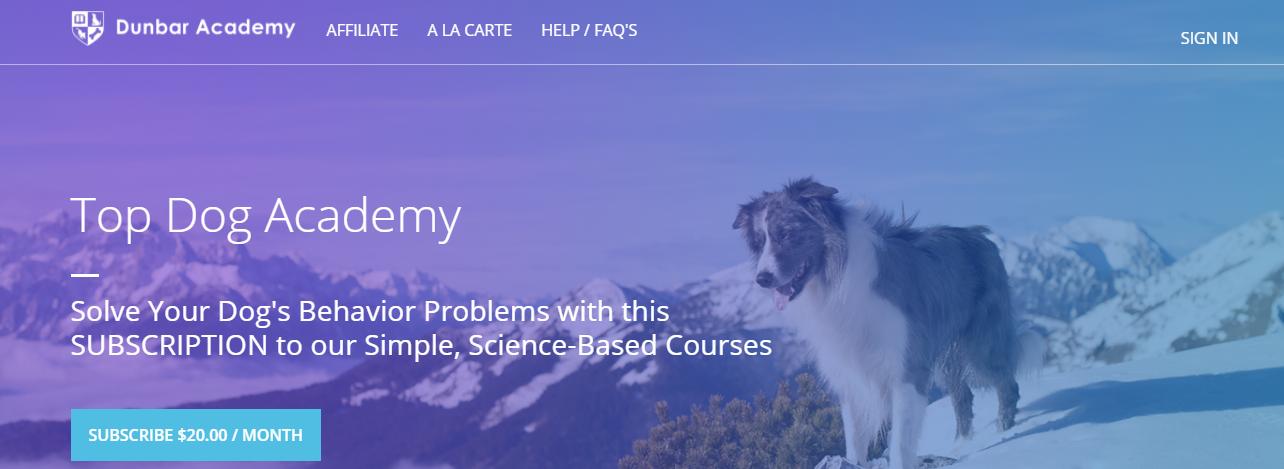 top dog academy website