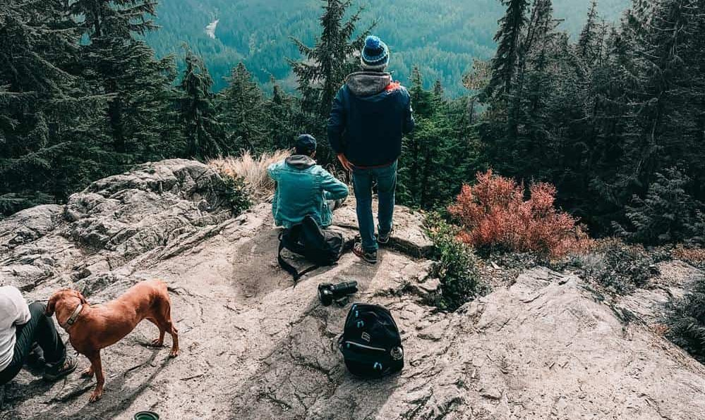 Hiking mountain with dogs